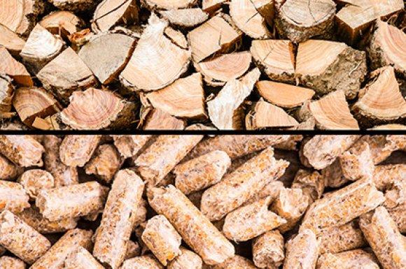 Livreur bois Pontrieux